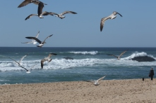 Adraga Beach I