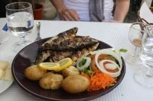Maritima Rest Sardines